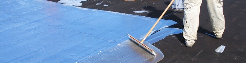 Roof Maintenance Services in Auckland